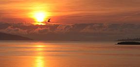 Windmere-Orcas-Island-doebaysunrise